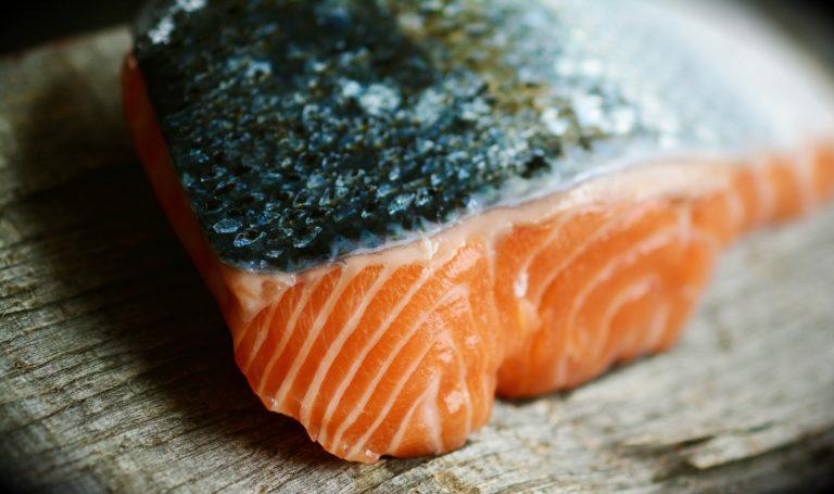 salmon-3139387